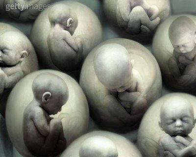 natalidad y aborto