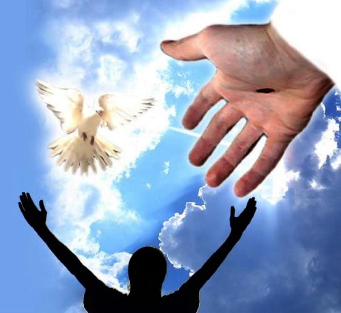Dios Puede Devolver la Salud Sin importar la Enfermedad