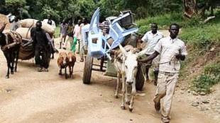 sudan-gobierno-exige-a-los