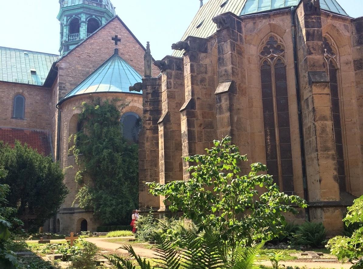 rosal de Hildesheim visto de lejos