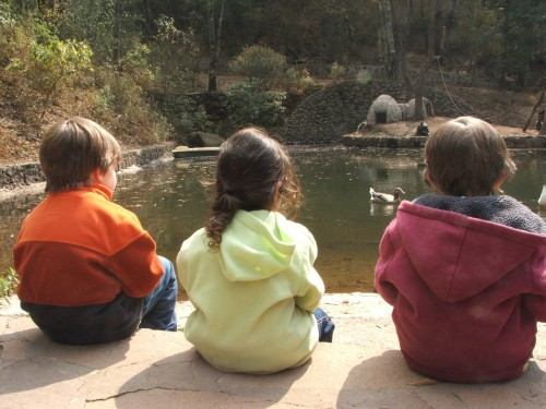 3 niños mirando el agua