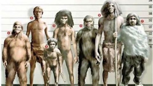 evolucionismo-vs-creacionismo