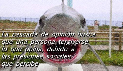 tiburon con letra