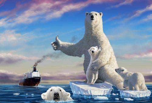 oso polar y barco