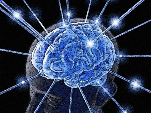 dibujo-de-cerebro-humano