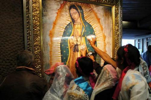 Guadalupe5