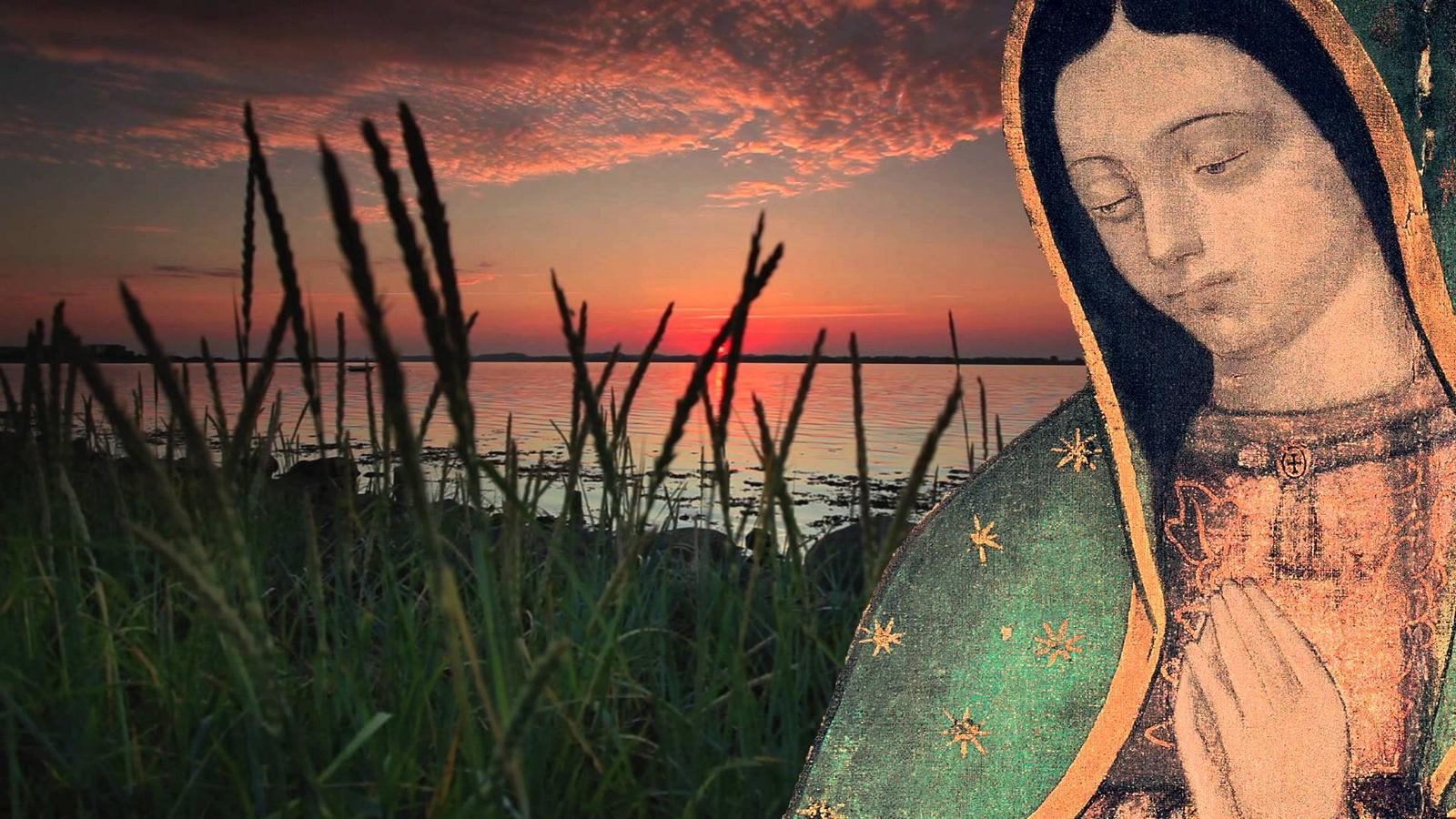 Cómo Realizó la Virgen María la Conversión más Prodigiosa de la Historia