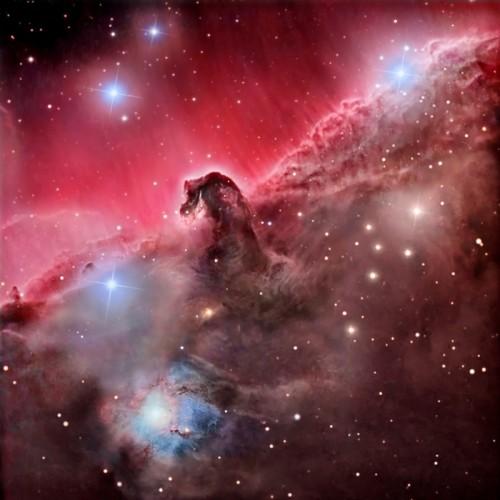 nebulosa-cabeza-de-caballo