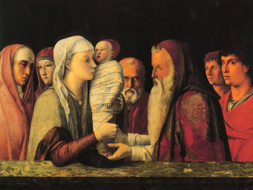 Bellini purificacion de maria