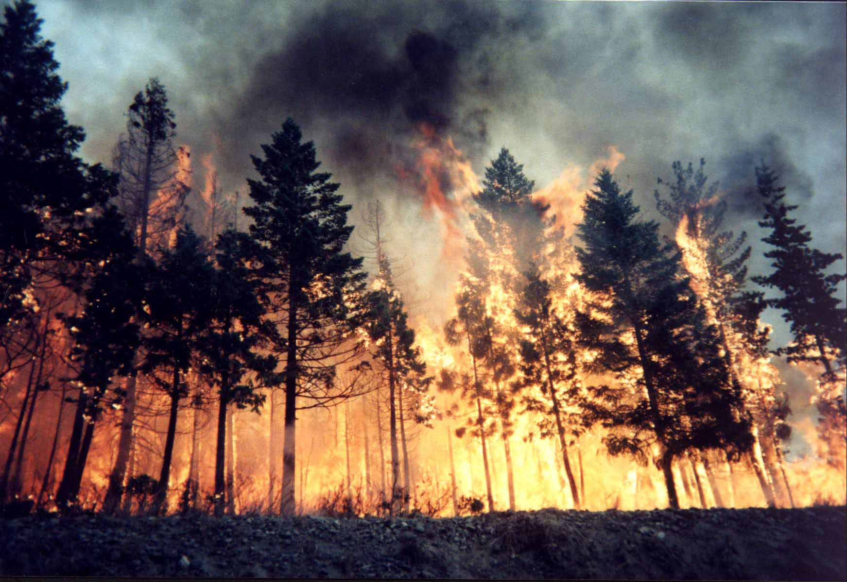 ¿Por qué son Vistos Fuegos en las Apariciones Marianas?
