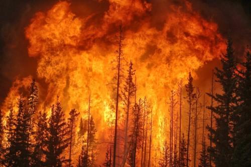 fuego del cielo
