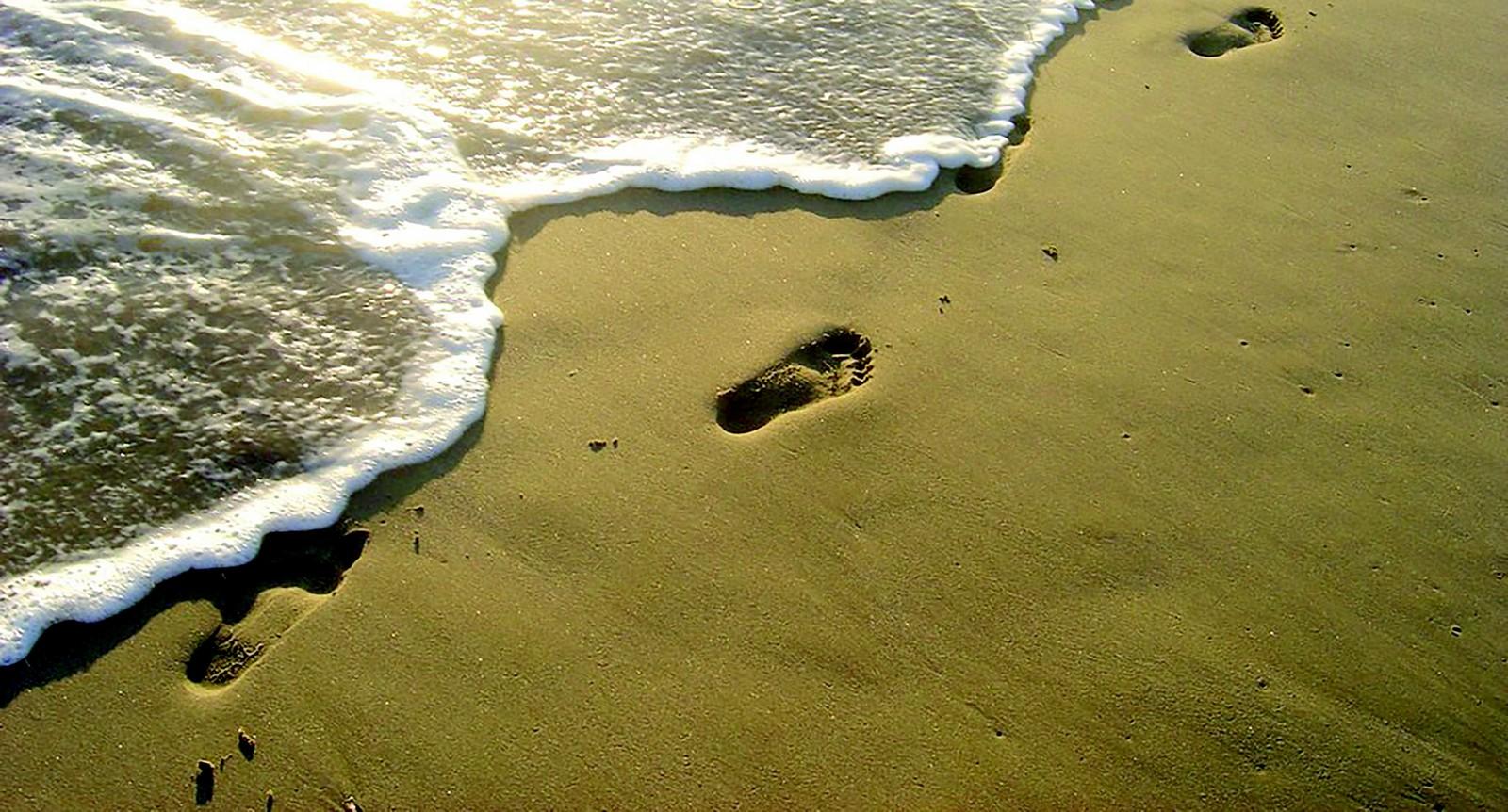 huellas en la arena  fe dondo