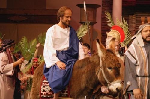 actor entrando montando en borrico a la celebracion de domingo de ramos