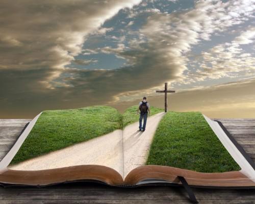 hombre caminando sobre la biblia