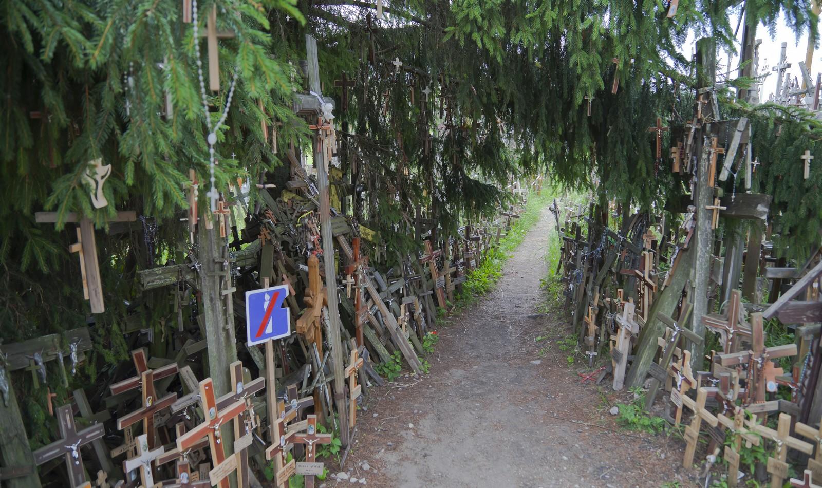 El Impresionante Testimonio de Fe de la Colina de las Cruces [en Lituania]