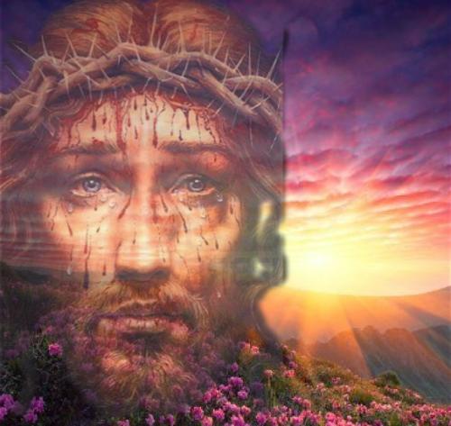 PRECIOSA SANGRE DE JESUCRISTO