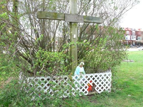 arbusto de la apricion del parque fairmount