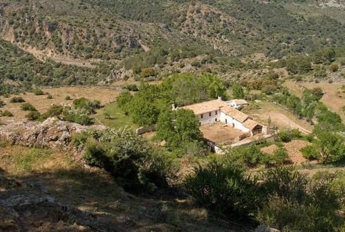 ermita daimiel