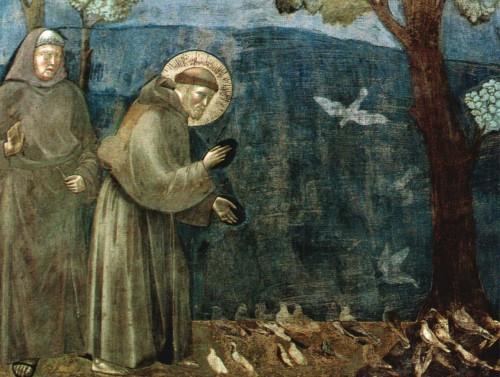 san francisco predica a los pajaros