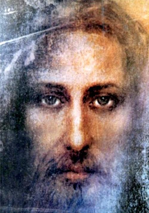 santo rostro de jesus