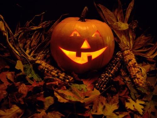 calabaza de halloween fondo