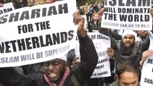 sharia for netherlands