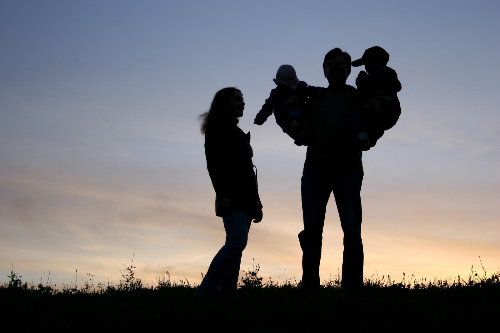 Cómo están Desmontando la FAMILIA [y cómo defenderla]