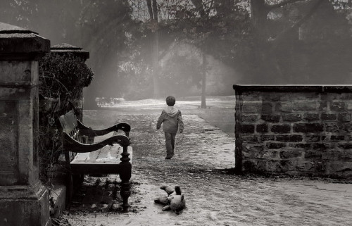 niño caminando en un parque