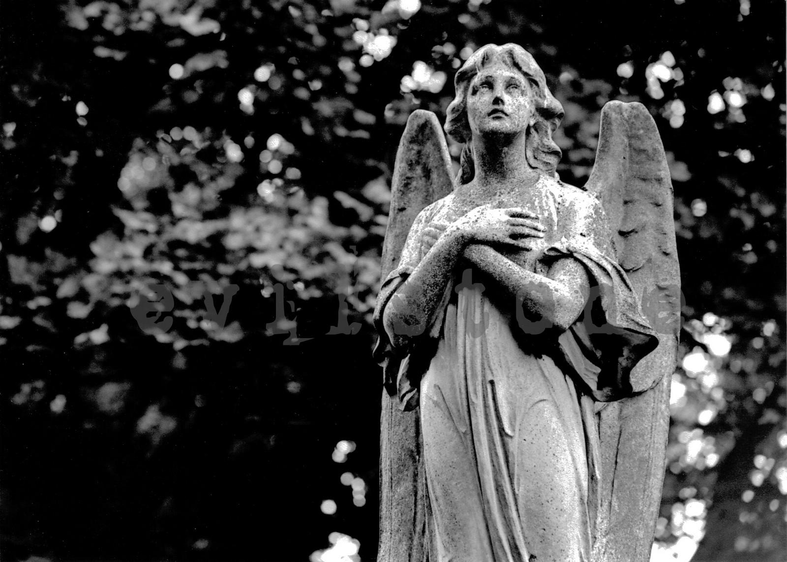 Mira cómo el Padre Pío Usaba las Habilidades de su Ángel [tú puedes hacer lo mismo]