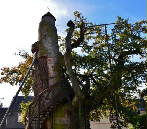 arbol capilla en francia