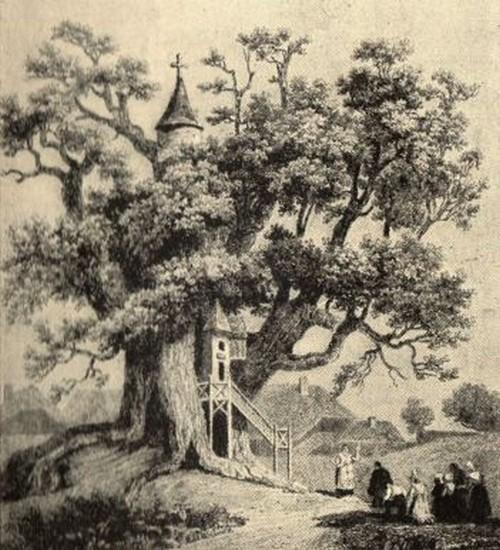 Grabado del árbol iglesia del siglo XVIII