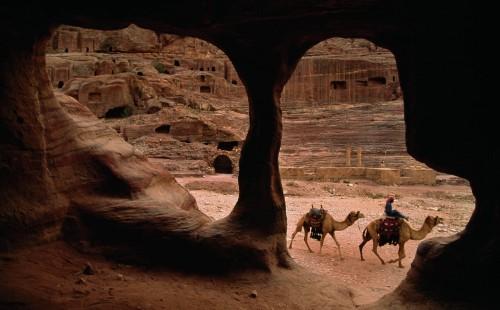 camellos pasando por cuevas fondo
