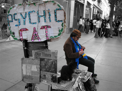 gato psiquico