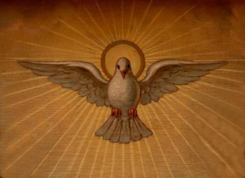 paloma de espiritu santo fondo