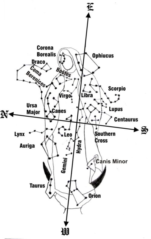 constelaciones-en-el-manto-de-la-virgen-de-guadalupe