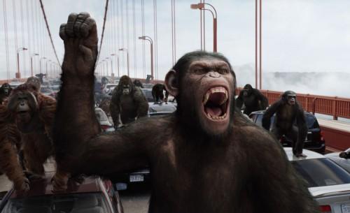 monos rugiendo en un puente