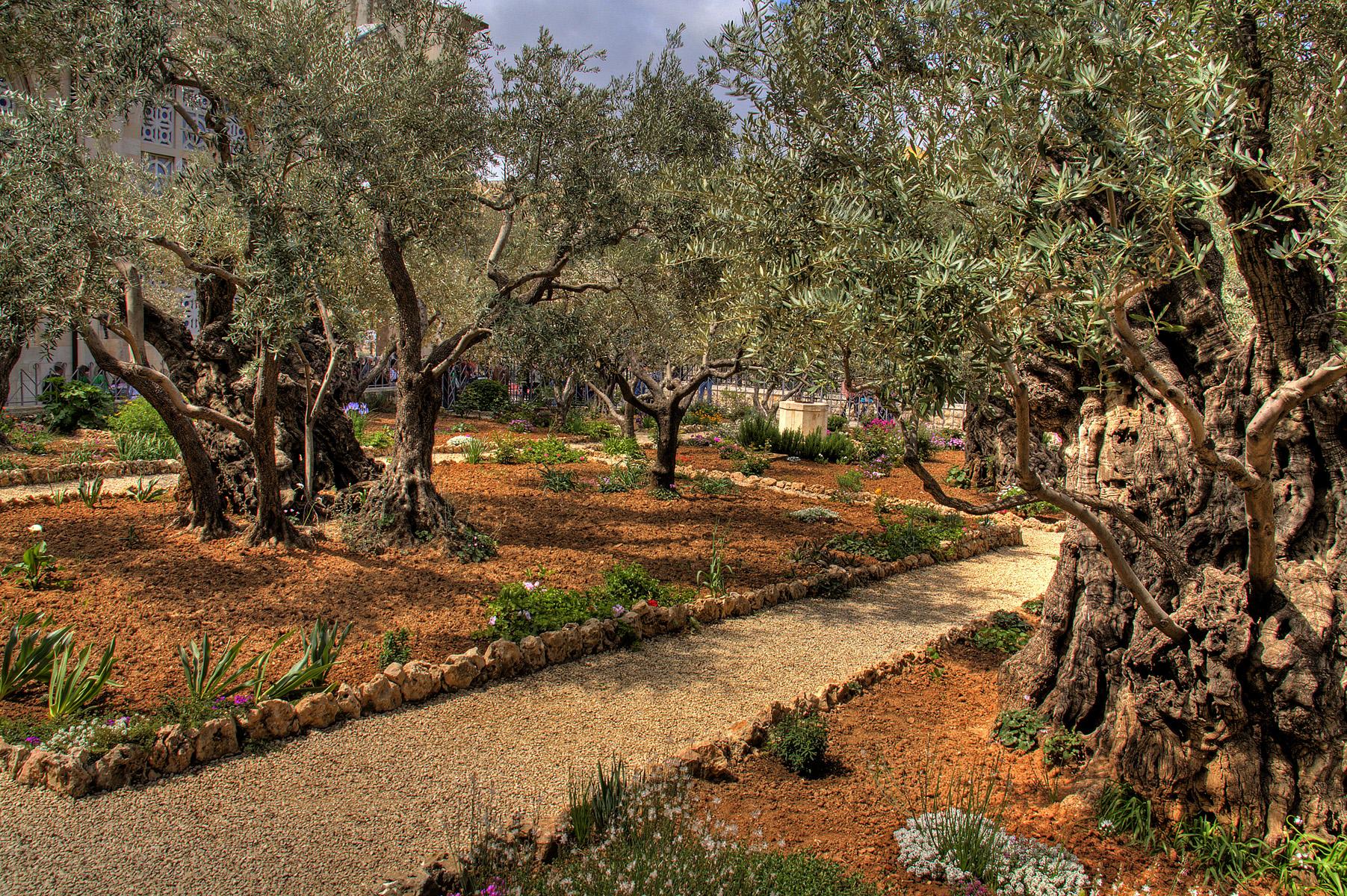 Una Fascinante Visita al Mundo y la Zona donde Vivió Jesús hace 2000 años