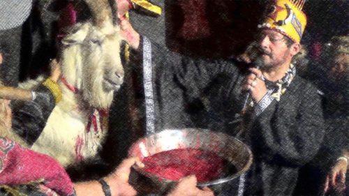 misa negra con sangre y un chivo