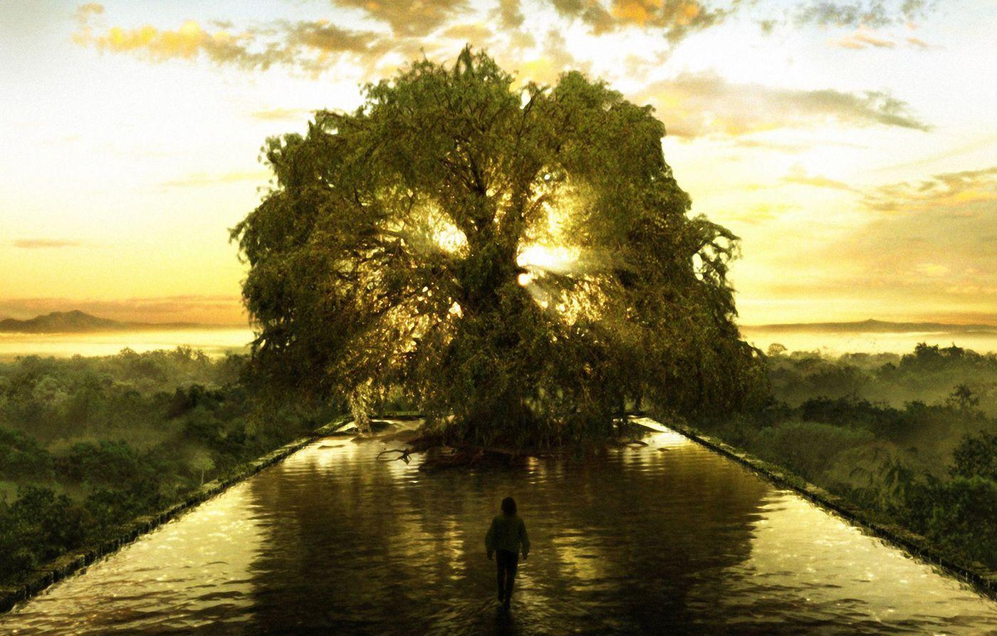 ¿Sabías que hay un Árbol que Sostiene toda la Vida ...