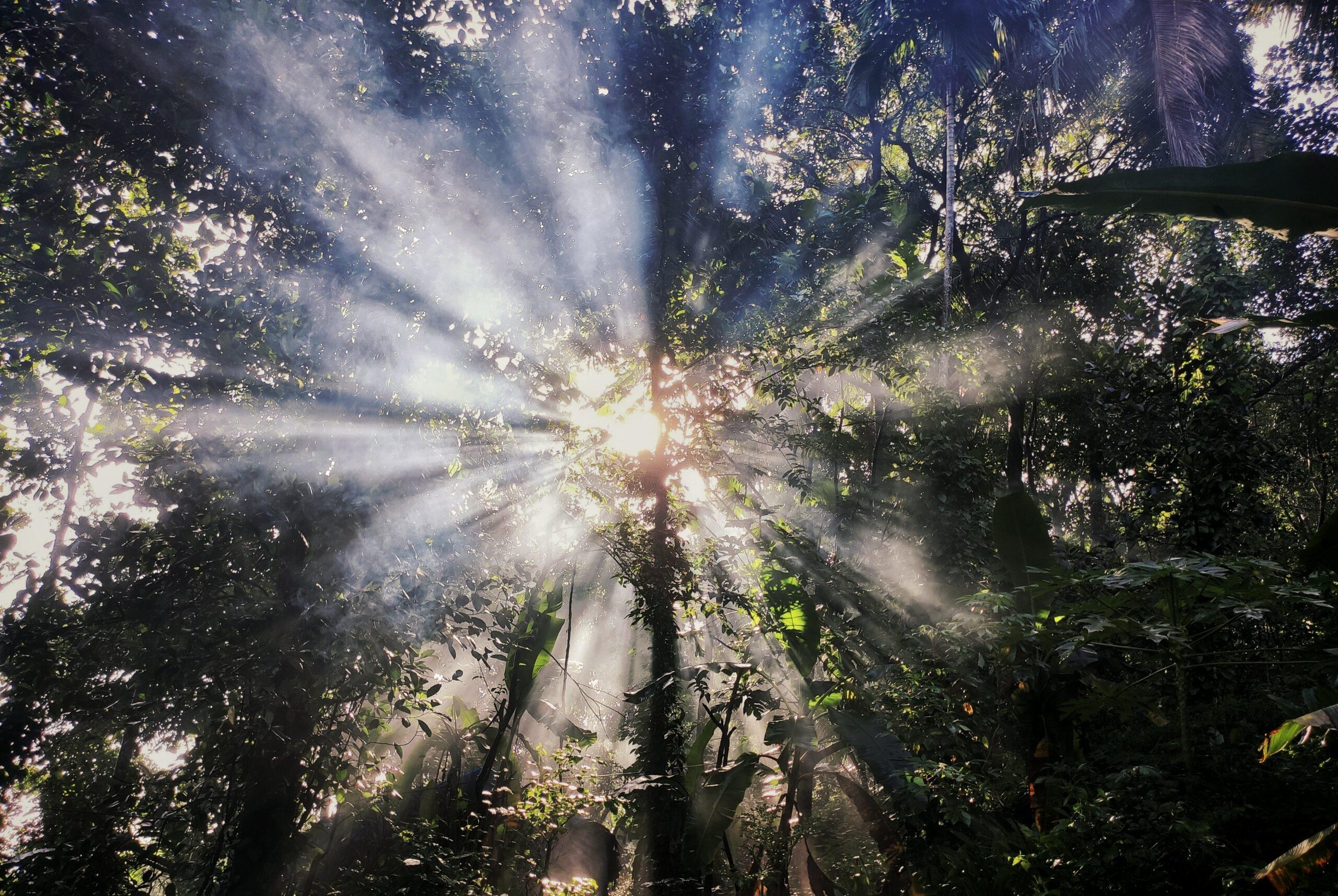 Qué les sucede a los católicos en la iluminación de conciencia [información para prepararse]