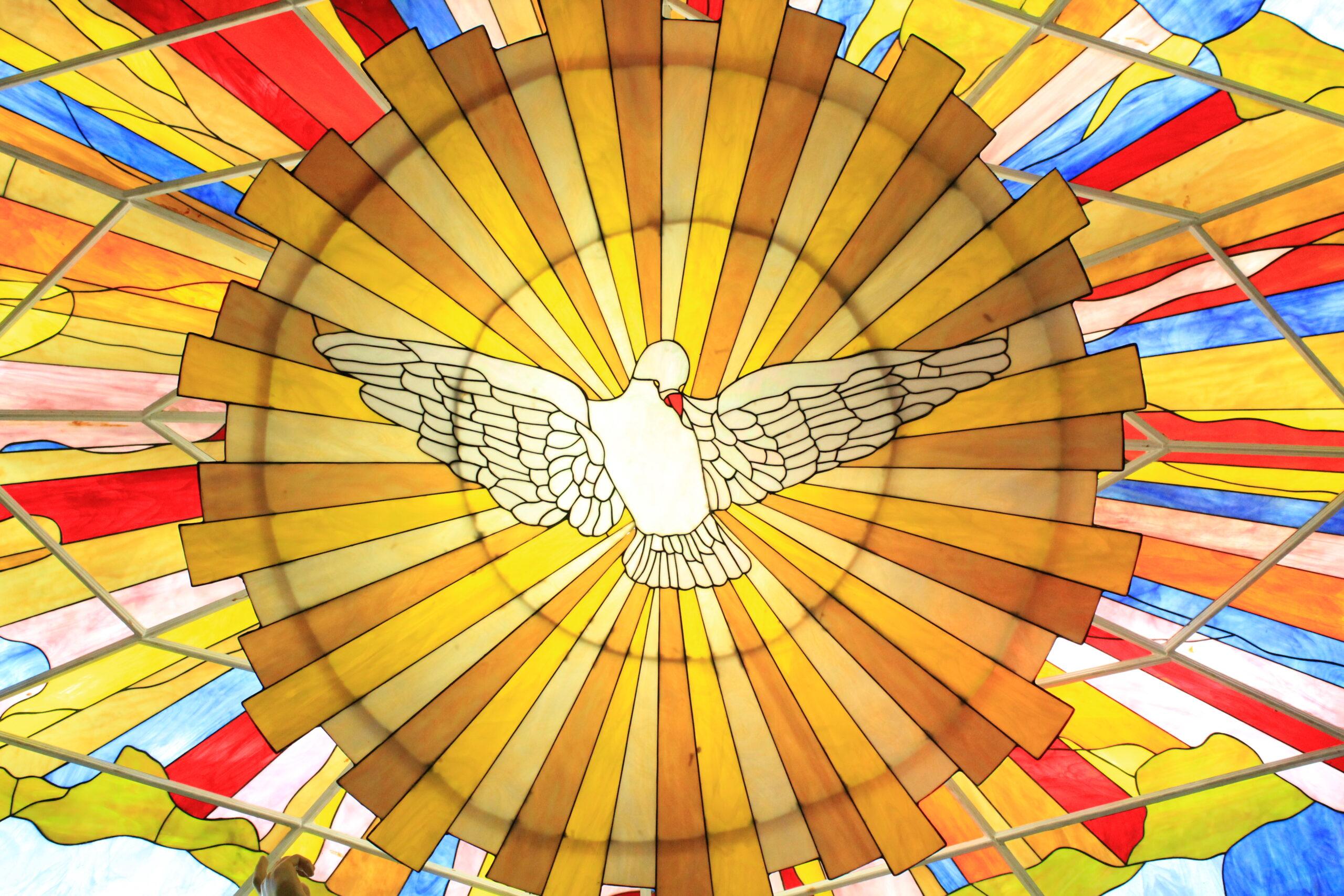 Cómo será la Purificación previa a la Venida del Reino de Dios [Jesús le cuenta a Marie des Vallées]